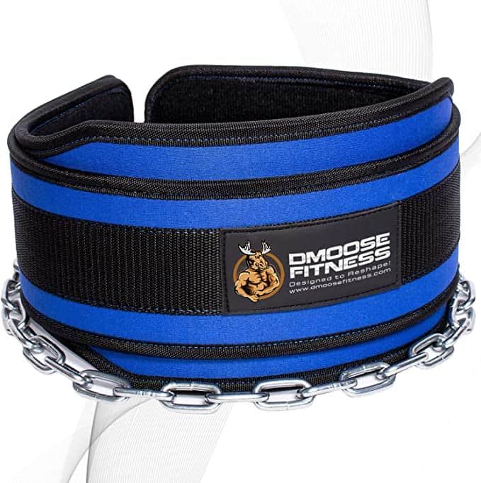 Dmoose Best Weighted Dip Belt